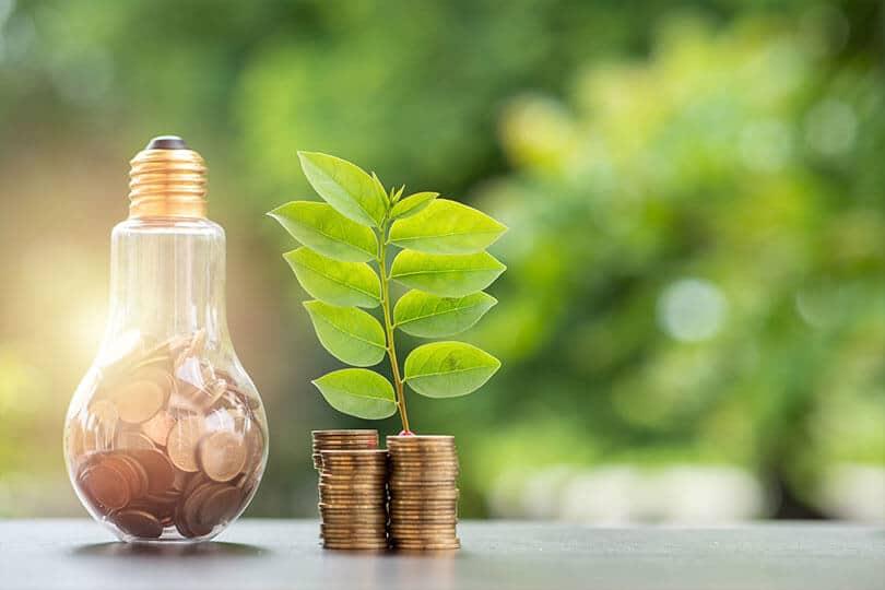 5 obiceiuri pentru a reduce consumul de energie